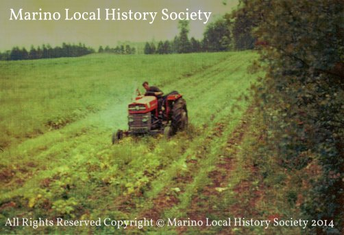 Copyright © Marino Local History Society 2014 -photo1