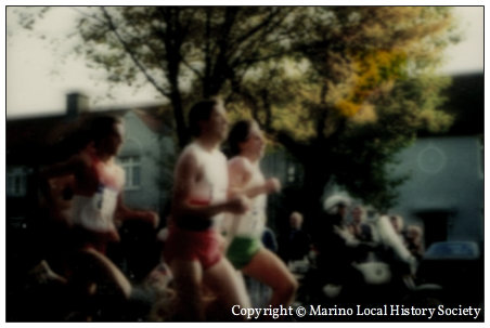 Copyright © Marino Local History Society golden mile